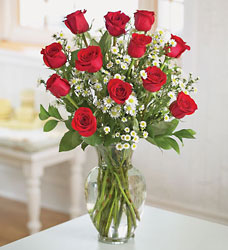 12 Red Roses Arranged from Philips' Flower & Gift Shop