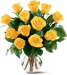 12 Yellow Roses from Philips' Flower & Gift Shop