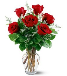 6 Red Roses Arranged from Philips' Flower & Gift Shop