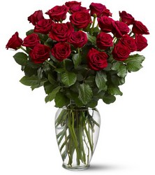 Two Dozen Red Roses from Philips' Flower & Gift Shop