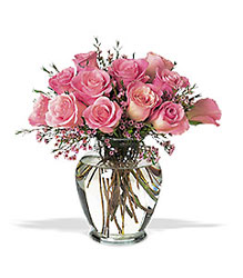 1 Dozen Pink Roses Arrangement from Philips' Flower & Gift Shop